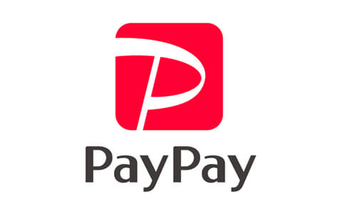 pay_pay